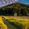 農家のEC事業参入を支援するソリューションが登場【ECのミカタWEB】