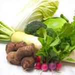 新野菜セット
