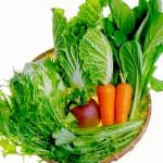 よしむら農園野菜セット
