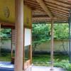 Japanese garden [ADACHI MUSEUM OF ART] 足立美術館